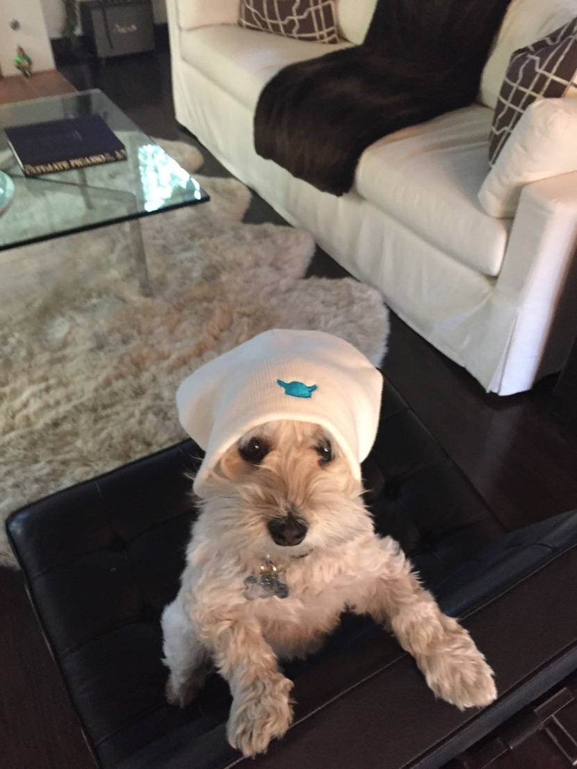 Holiday Helping Hats – DeadlineApproaching!